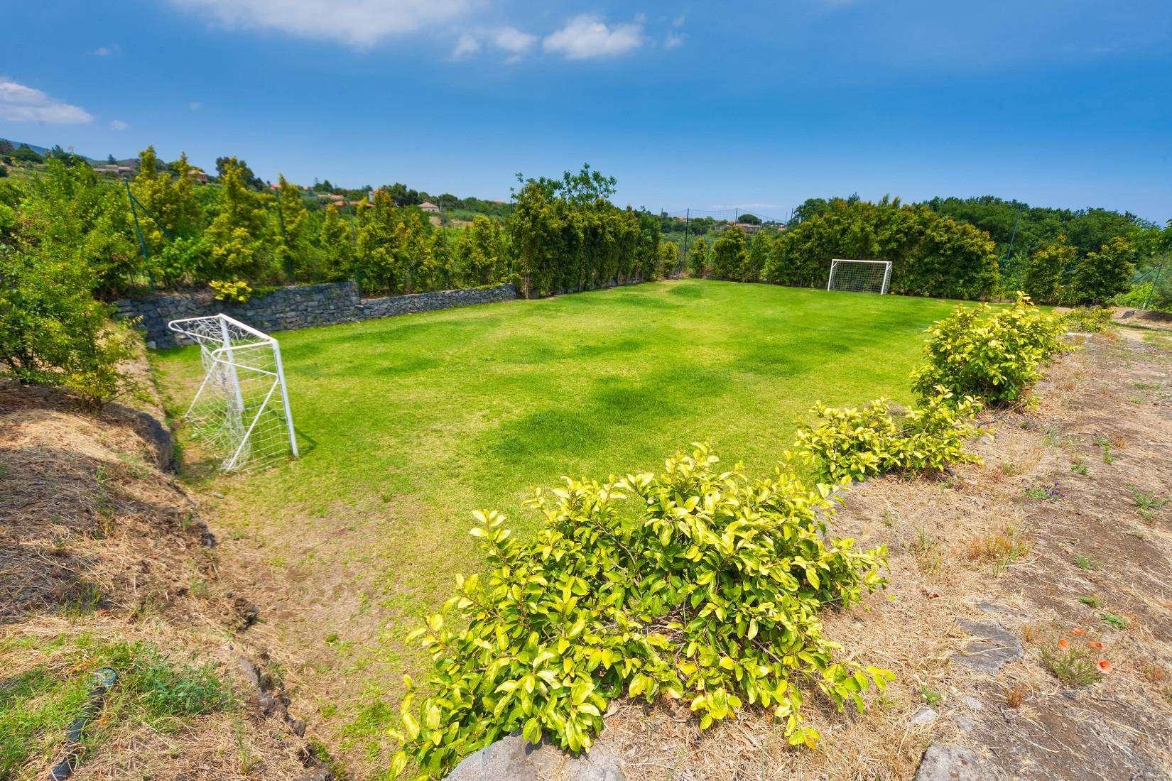 18 Rose Football field