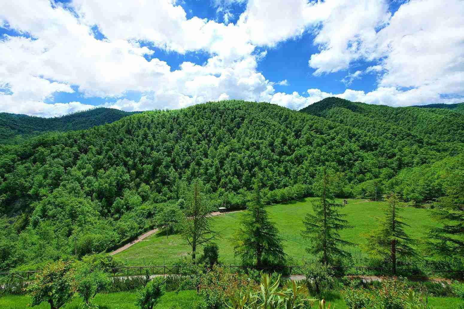 9 Etruria panoramic view